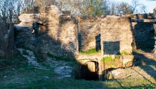 Руїни міського замку Надвірна