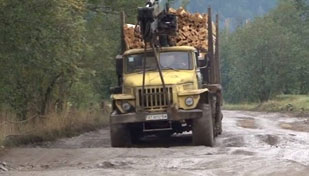 """Через розбиті дороги на Надвірнянщині у """"швидкій"""" за рік 18 разів прийняли пологи"""